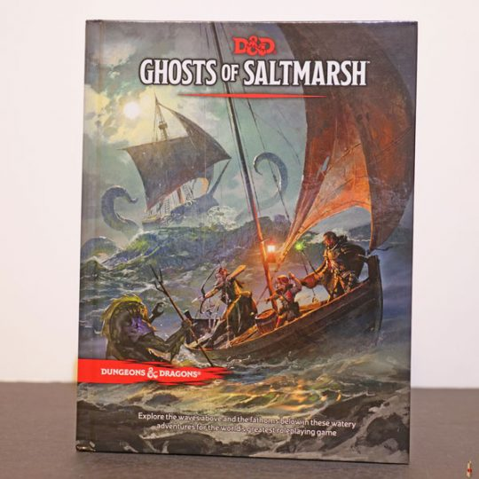 ghosts of saltmarsh front