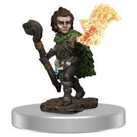 pathfinder male gnome druid