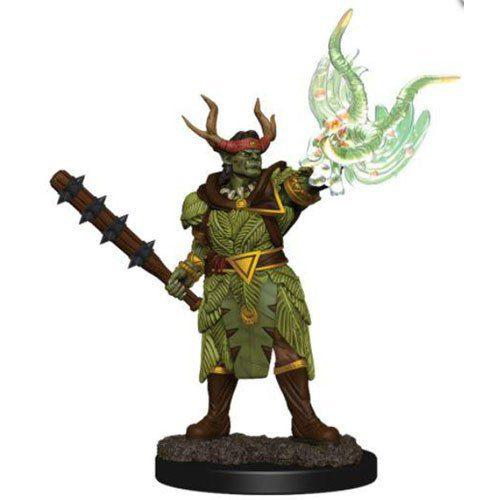 pathfinder male half orc druid temp